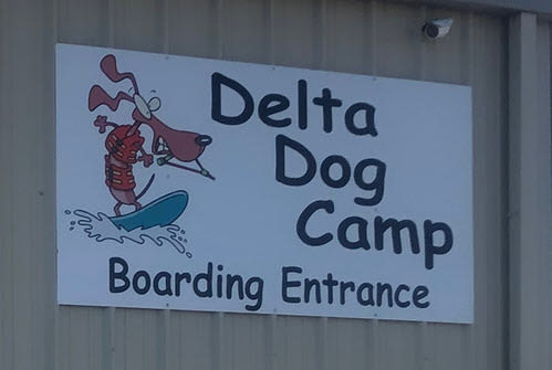 Delta Dog Camp Oakley California