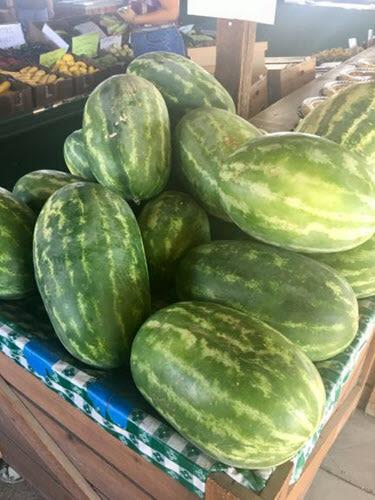 Watermelon Oakley California