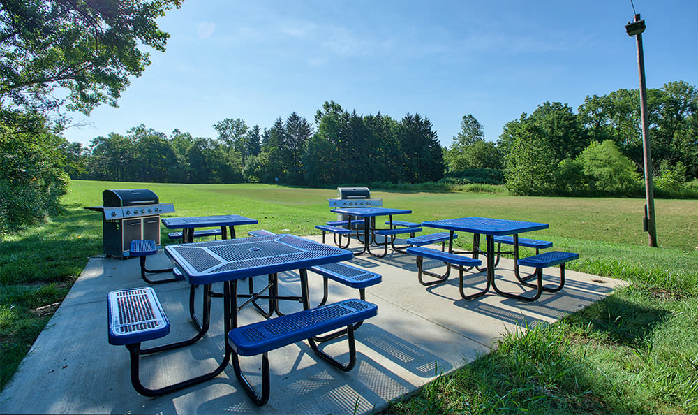 Picnic area at Solon Club Apartments in Oakwood Village, OH