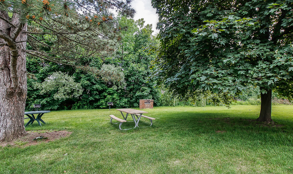 Picnic area at Waverlywood Apartments & Townhomes in Webster, New York