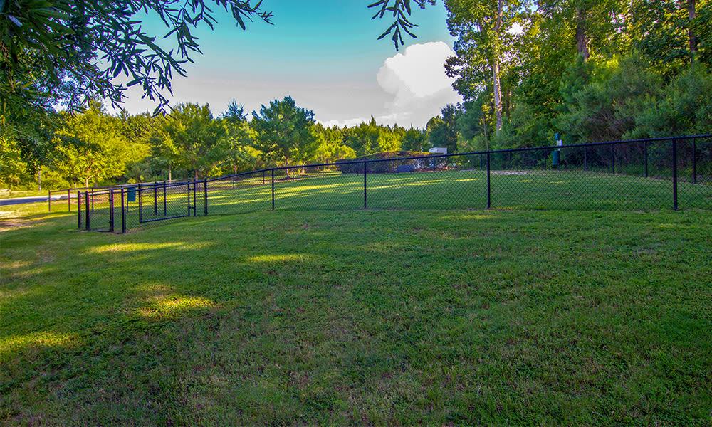 Beautiful gardens at The Overlook at Golden Hills in Lexington, South Carolina