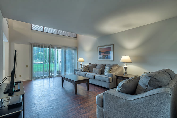 Our apartments in Painted Post, New York showcase a luxury living room