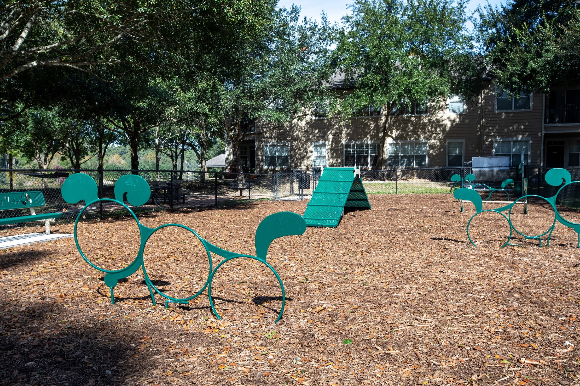 Dog park and playground at Artisan at Lake Wyndemere in The Woodlands, Texas