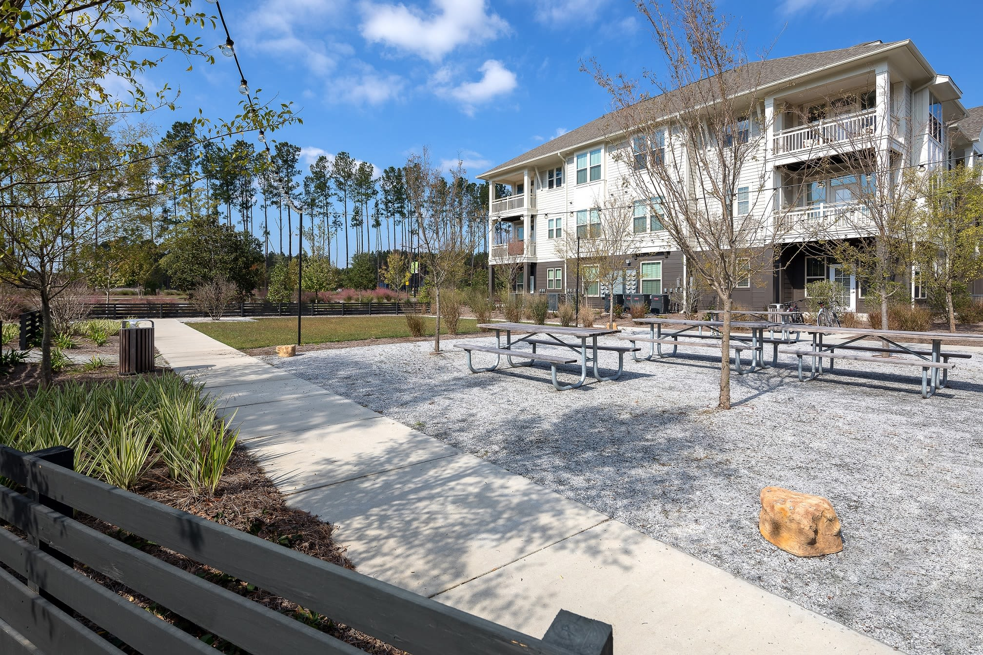Outdoor picnic area at Elevate at Brighton Park in Summerville, South Carolina