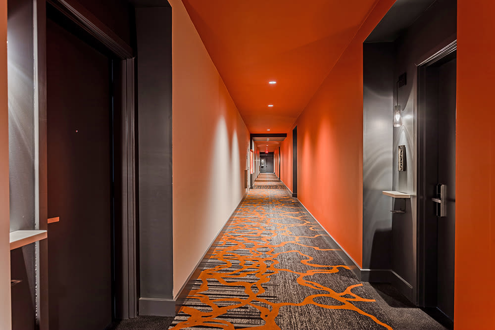 Chic hallways at 933 the U in Rochester, New York