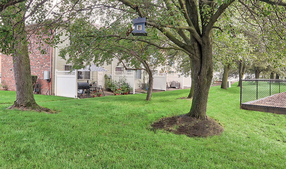 Peaceful exterior at Elmwood Terrace Apartments & Townhomes in Rochester, New York
