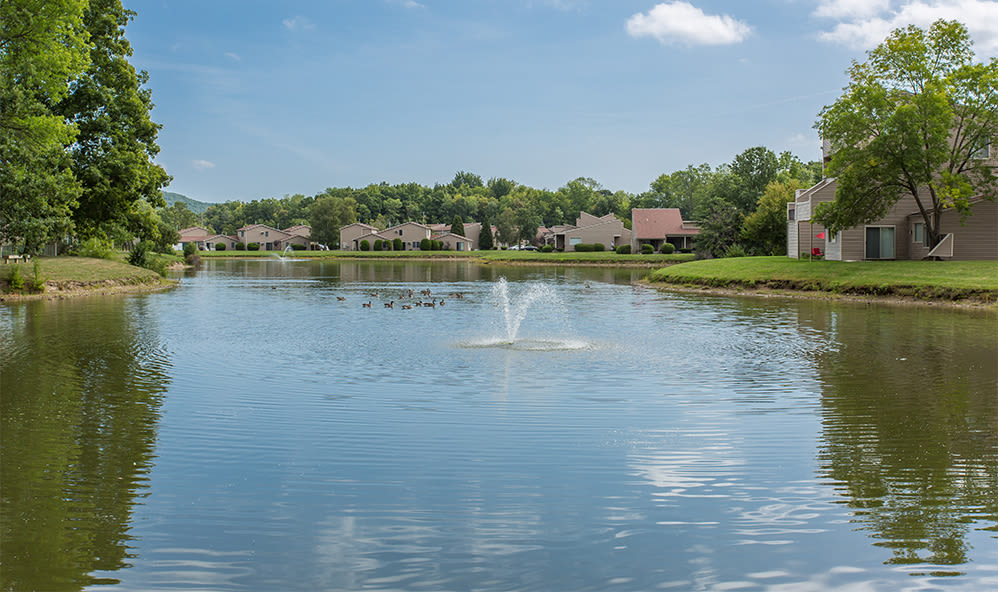 Beautiful views at Emerald Springs Apartments in Painted Post, New York