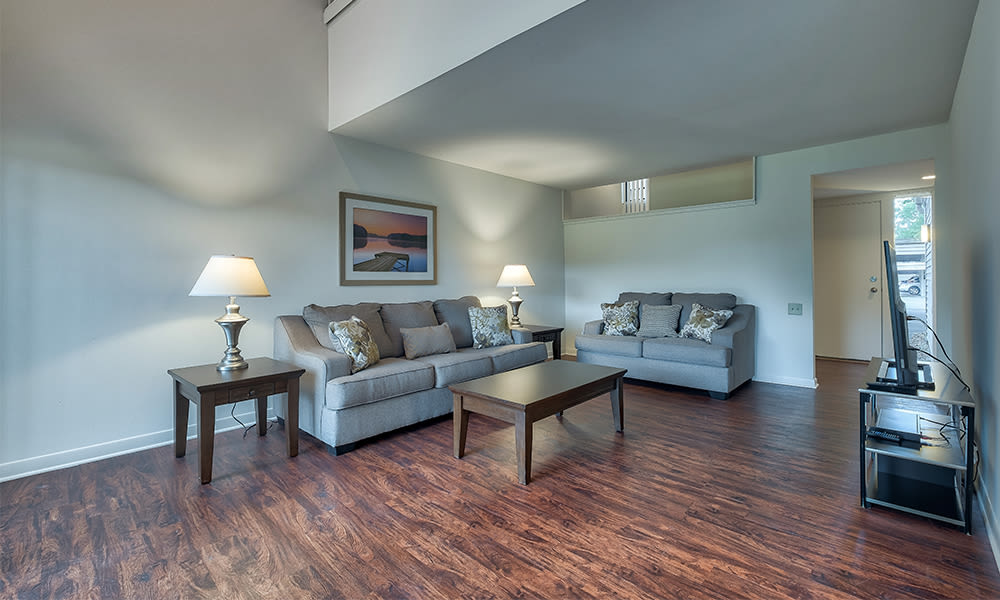 Spacious living room at Emerald Springs Apartments in Painted Post, New York