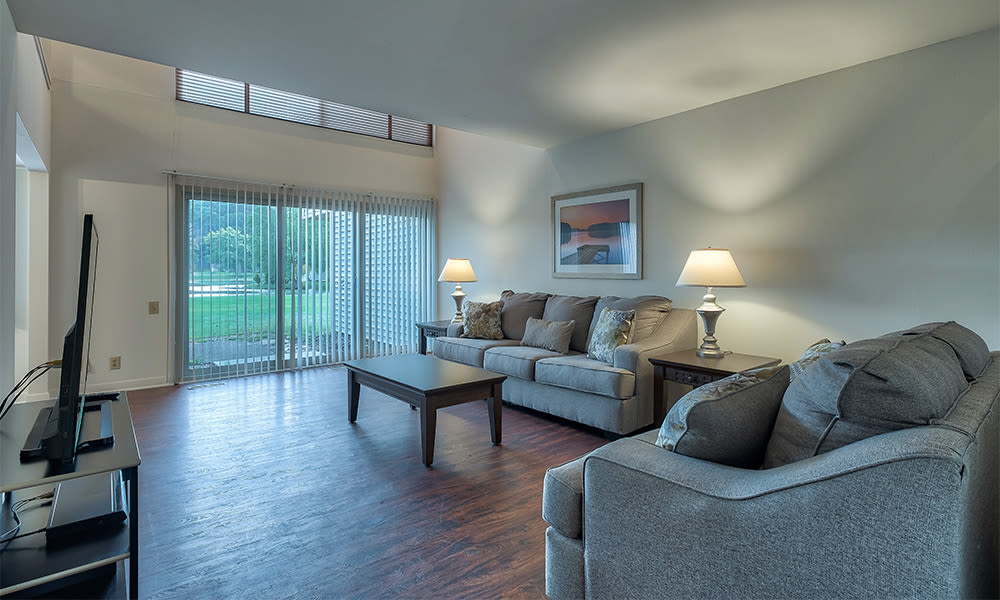 Naturally well-lit living room at Emerald Springs Apartments in Painted Post, New York
