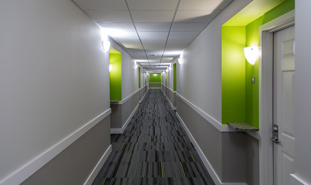 Hallway at Greenwood Cove Apartments in Rochester, New York