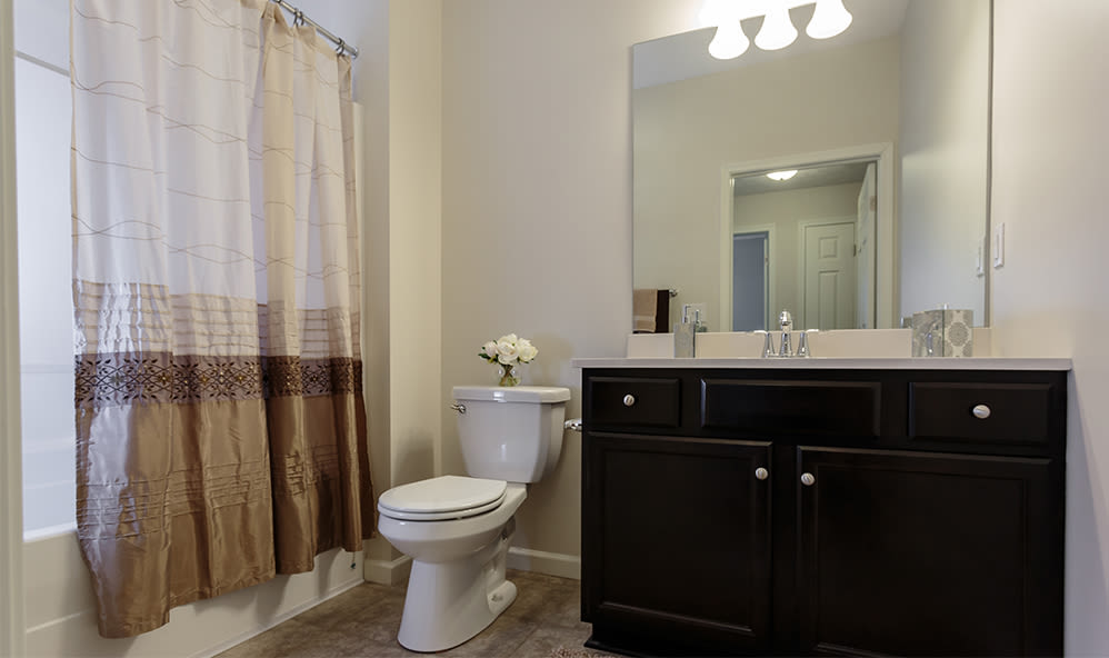 Bathroom at Auburn Creek Apartments home in Victor, New York