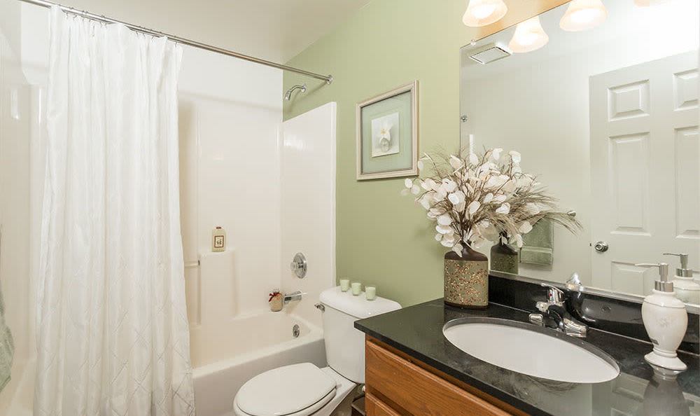 Spacious bathroom at Maplewood Estates Apartments in Hamburg, New York