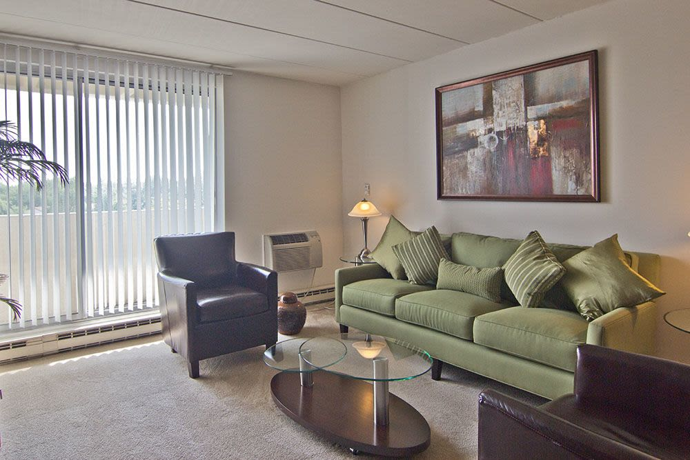 Naturally well-lit living room at Park Towers Apartments in Richton Park, Illinois
