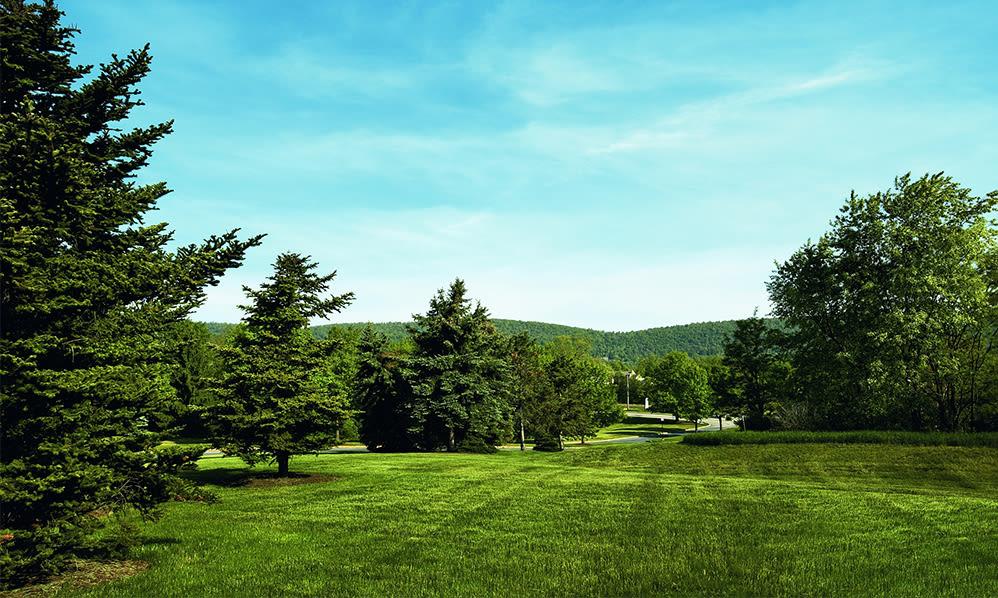 Park-like setting at The Village of Laurel Ridge & The Encore Apartments & Townhomes in Harrisburg, Pennsylvania