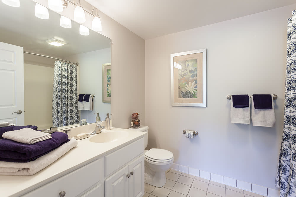 Bathroom at Oakmonte Apartments home in Webster, New York