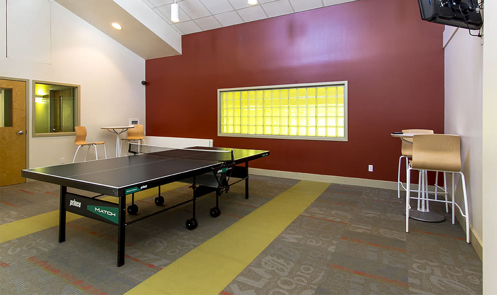 Ping-pong table at Raintree Island Apartments in Tonawanda, New York