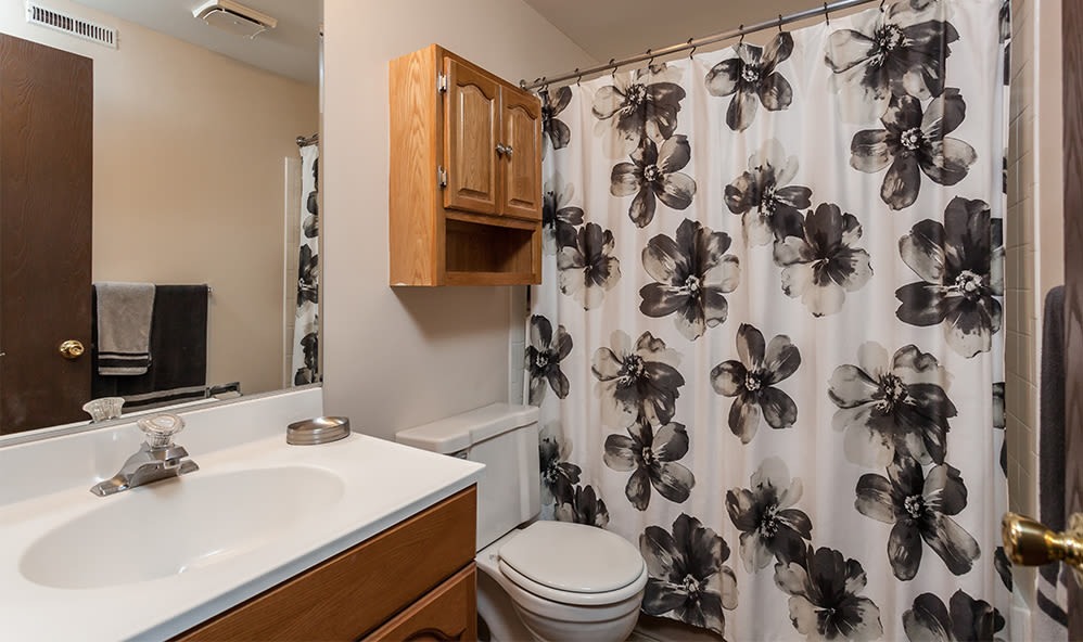 Bathroom at Raintree Island Apartments home in Tonawanda, New York