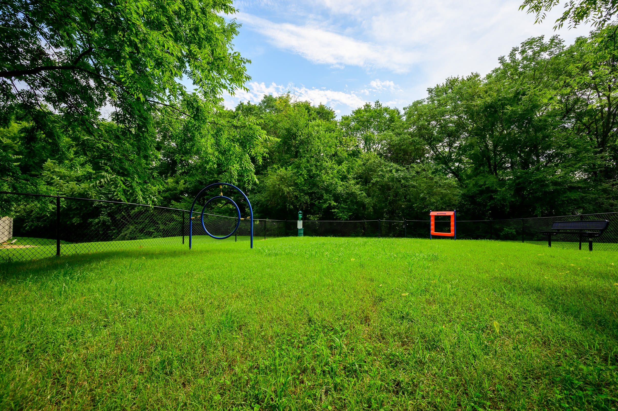 Spacious dog park with agility course at The Hamilton in Hendersonville, Tennessee