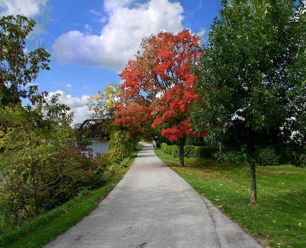 Paved path at Hickory Hollow in Spencerport, New York
