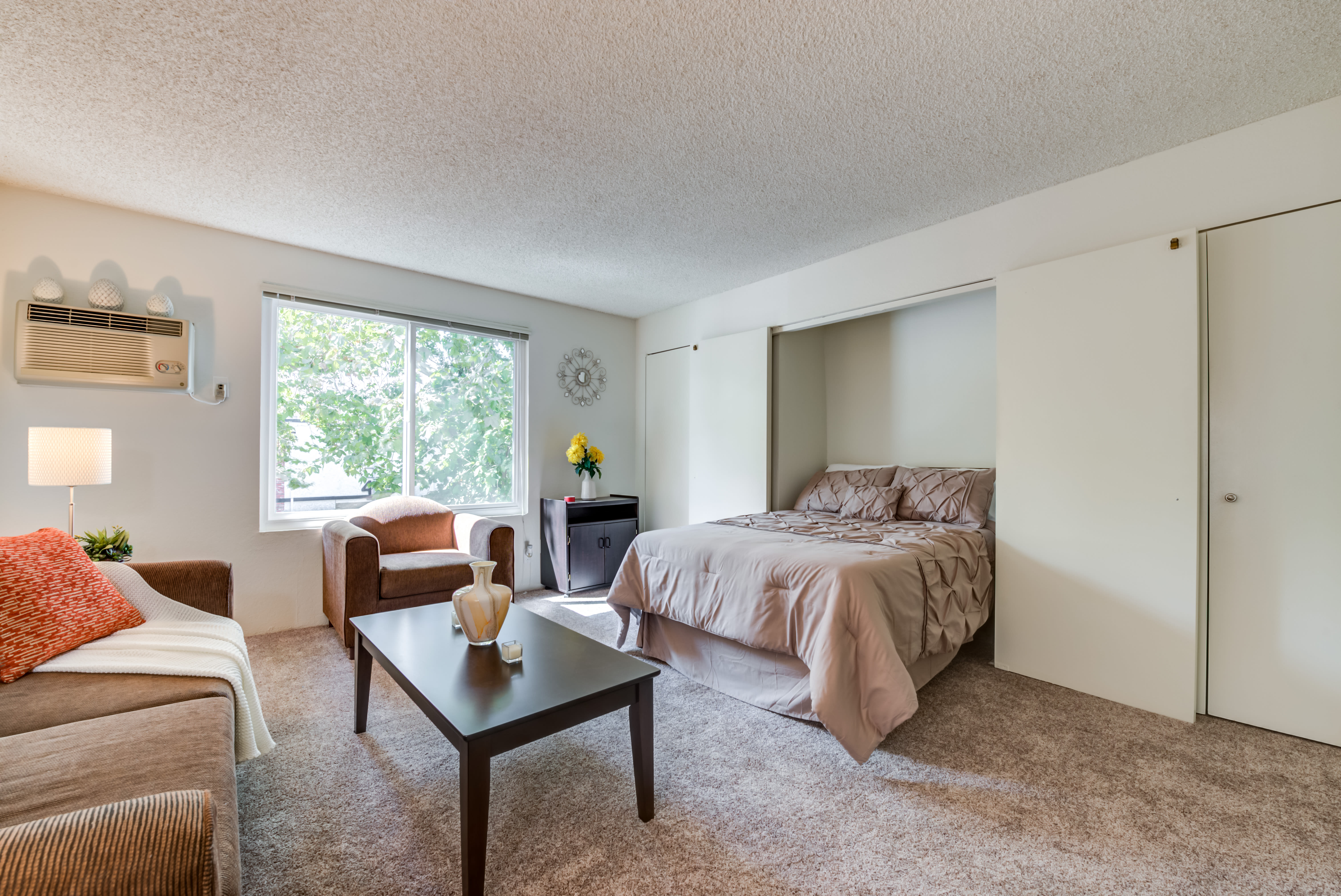 Studio apartment with carpeted floors