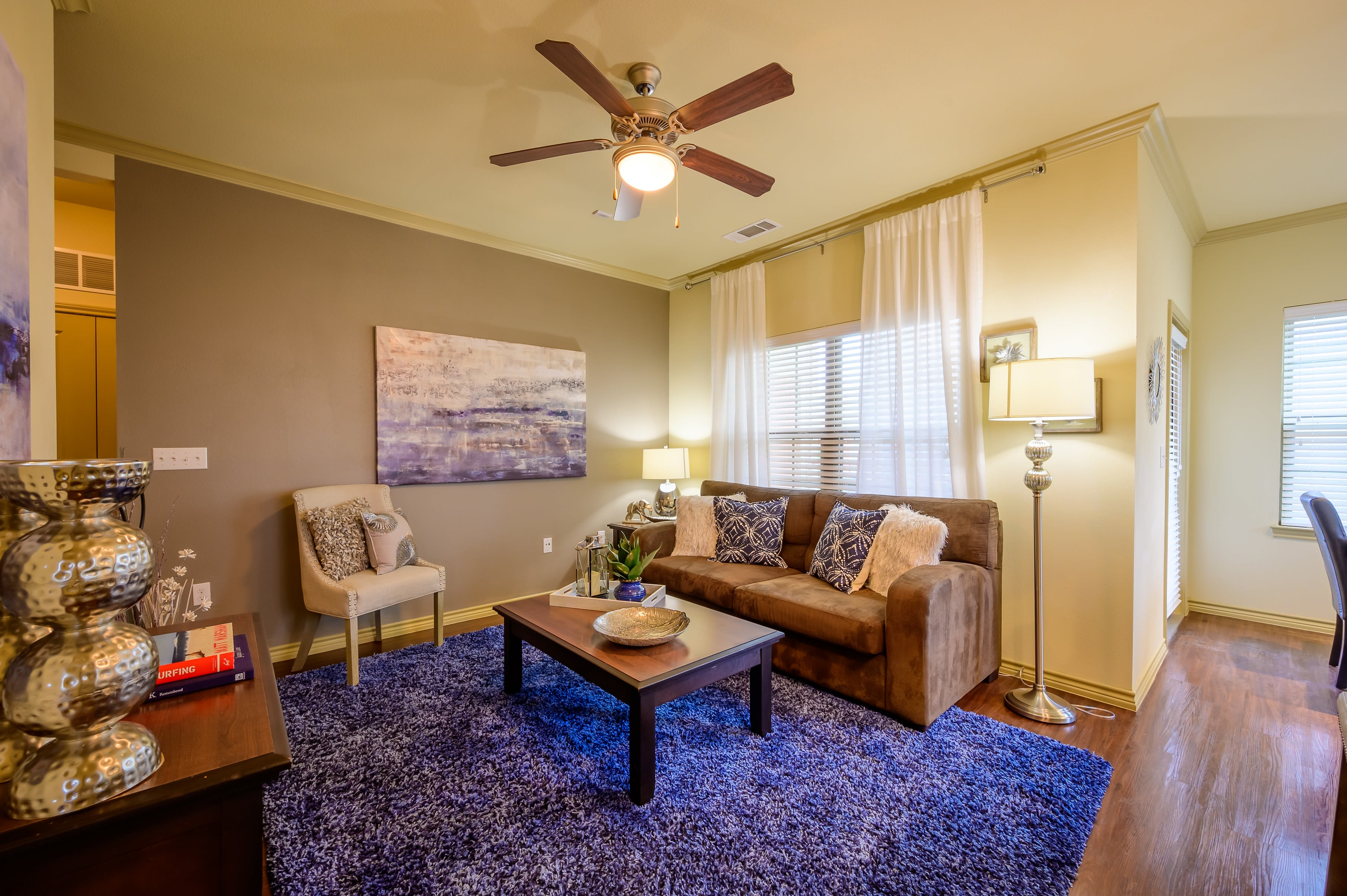 Modern decor living room at Pecan Springs Apartments