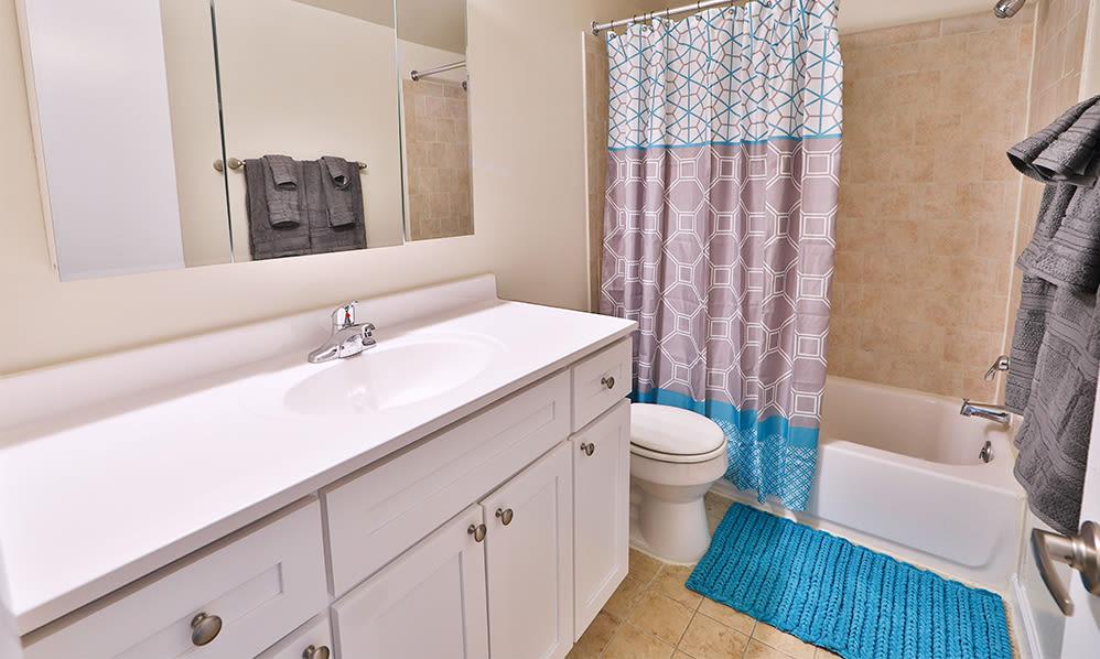 Bathroom at East Meadow Apartments in Fairfax, Virginia