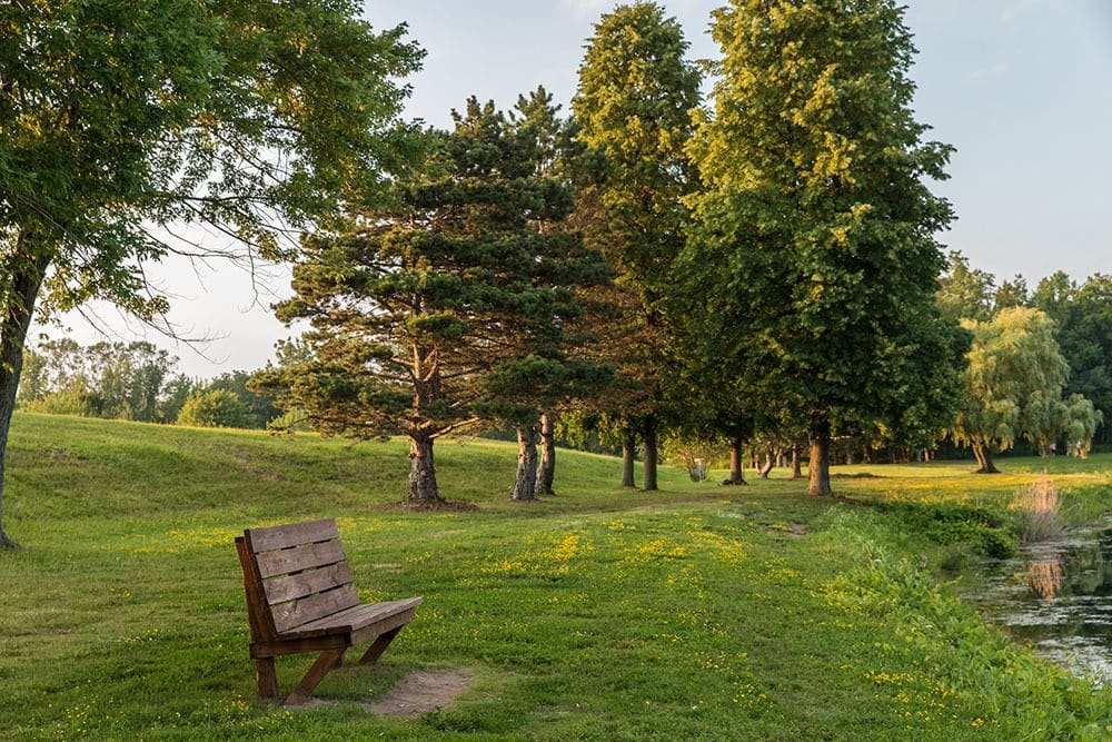 Viewing bench at North Ponds Park in Webster, New York near Winding Creek Apartments