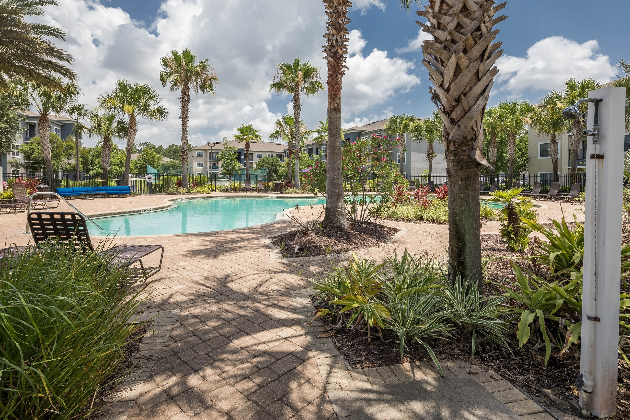 Resort style pool with palm trees at Mezza in Jacksonville, Florida