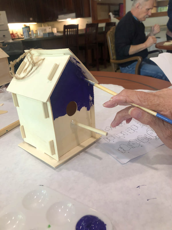 birdhouse activity at Moran Vista