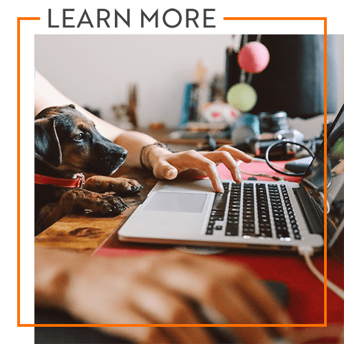 Learn more about reviews of Storage Units in Aiken, South Carolina