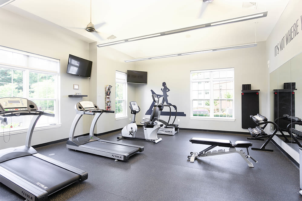 Naturally well-lit fitness center at Torrente Apartment Homes in Upper St Clair, Pennsylvania