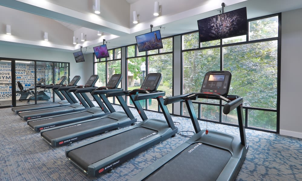 Gorgeous Gym at Willow Run at Mark Center Apartment Homes in Alexandria, VA