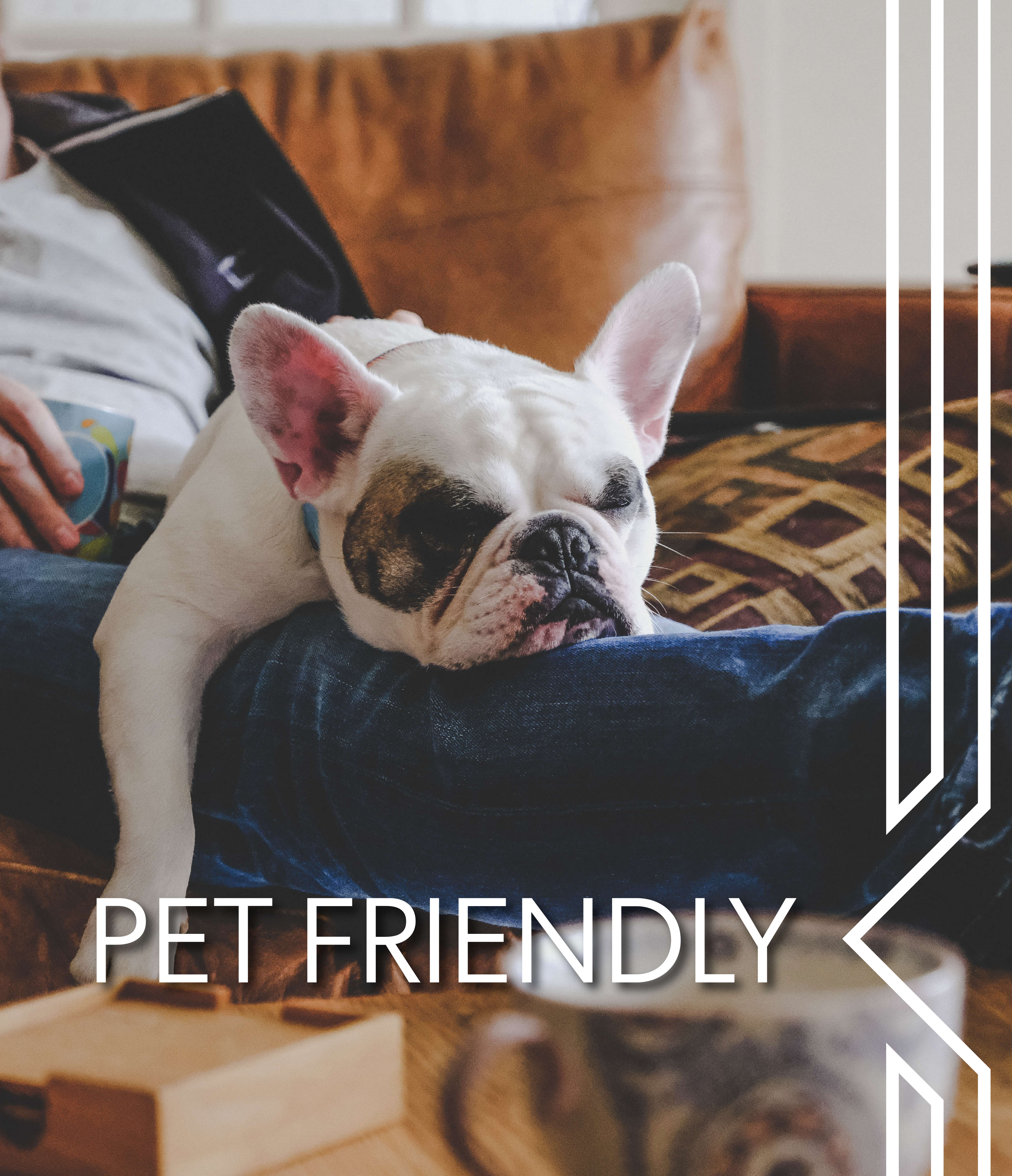 View our pet policy at The Station at River Crossing in Macon, Georgia