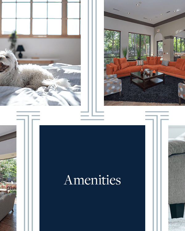 Link to amenities page of The Verandas at Timberglen in Dallas, Texas