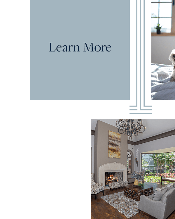 Link to learn more about floor plans of The Verandas at Timberglen in Dallas, Texas