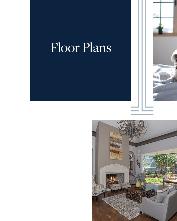 Link to floor plans page of The Verandas at Timberglen in Dallas, Texas