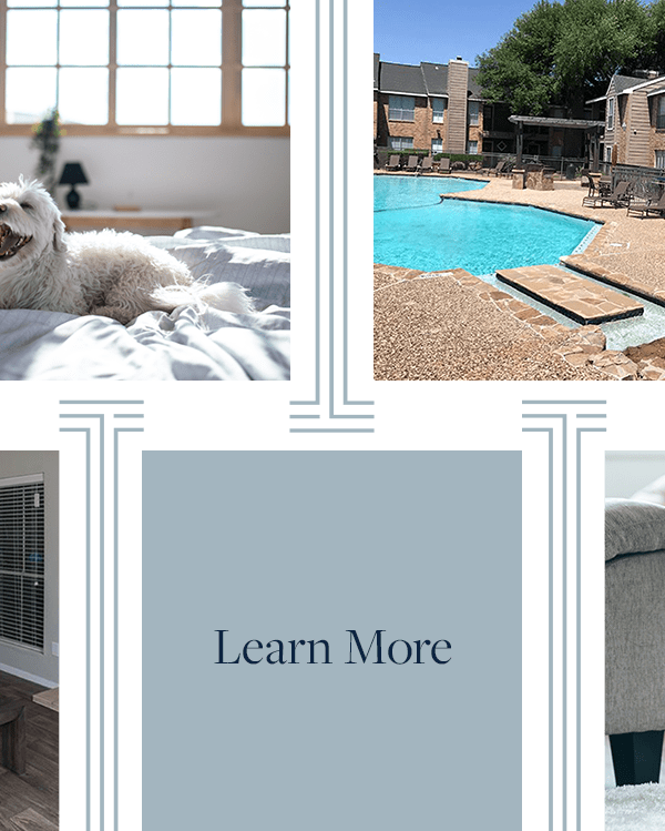 Learn more about the amenities near Broadstone Briar Forest in Houston, Texas