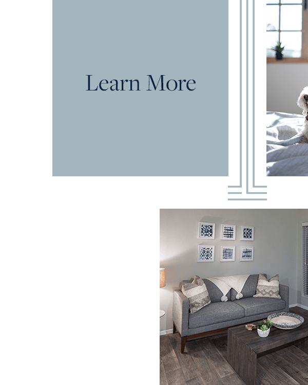 Link to learn more about floor plans of Broadstone Briar Forest in Houston, Texas