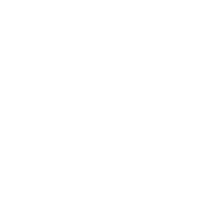 Icon version of our logo at The Coast of Naples Florida in Naples, Florida