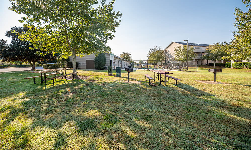 Picnic area at Station 153 Apartment Homes in Anderson, South Carolina