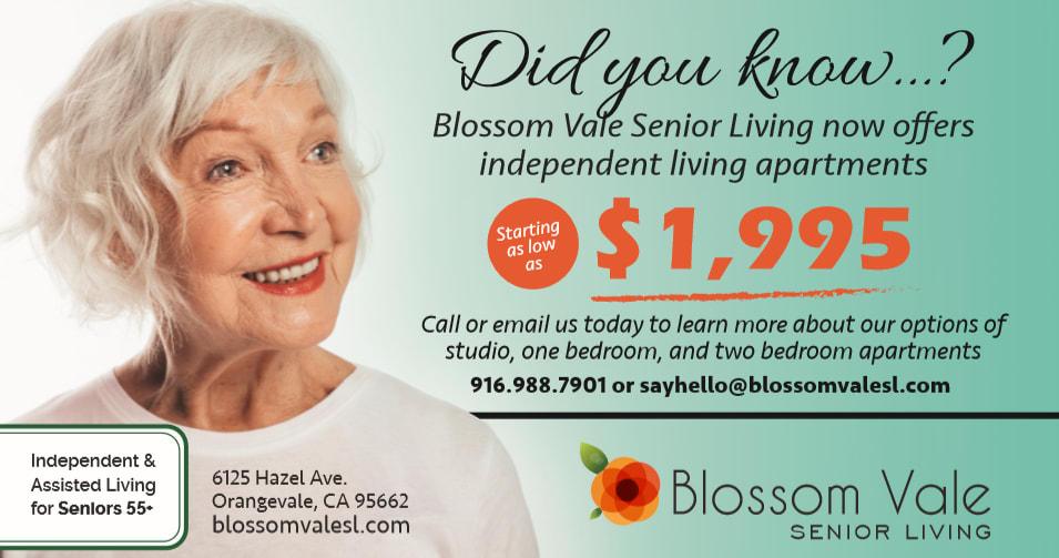 Blossom Vale Senior Living flyer