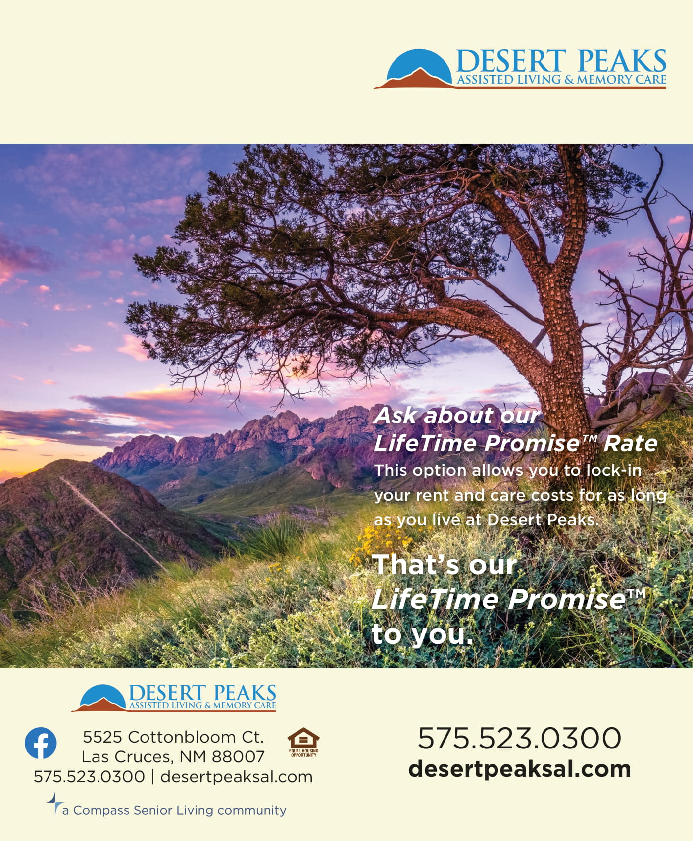 Desert Peaks Assisted Living and Memory Care flyer