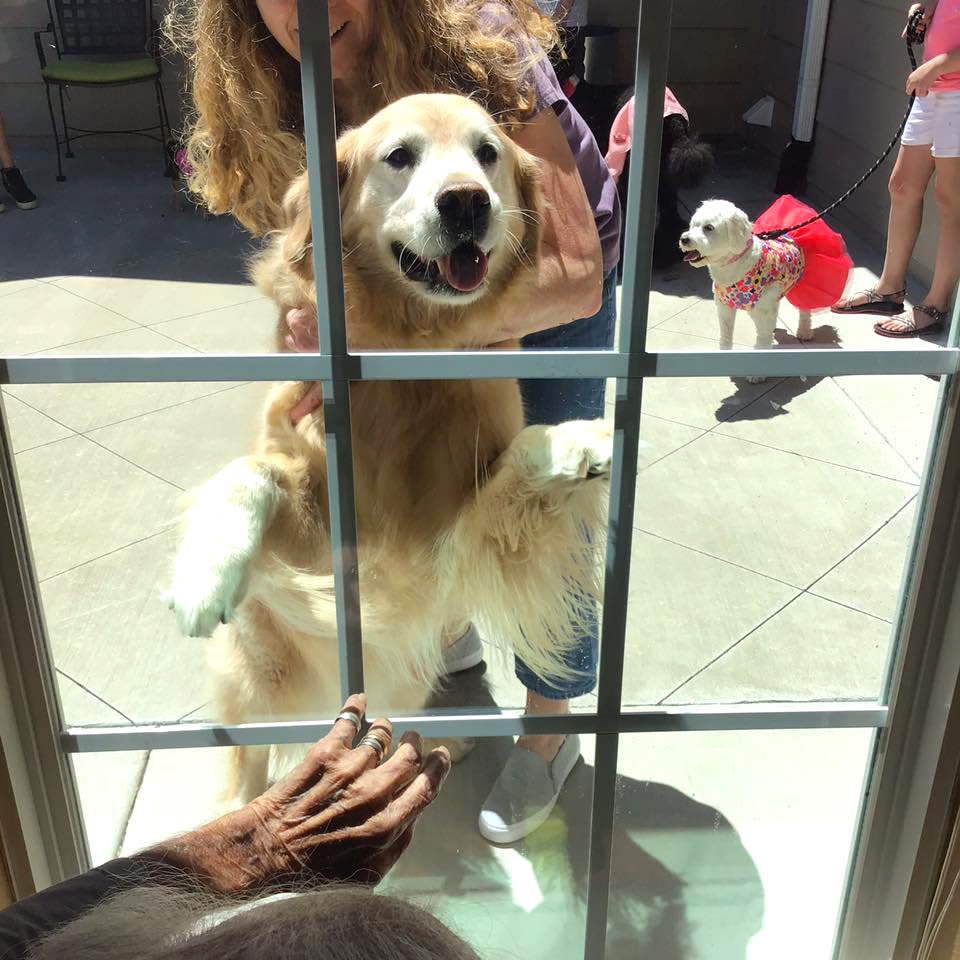 Resident interacting with a golden retriever at Oxford Glen Memory Care at Owasso in Owasso, Oklahoma
