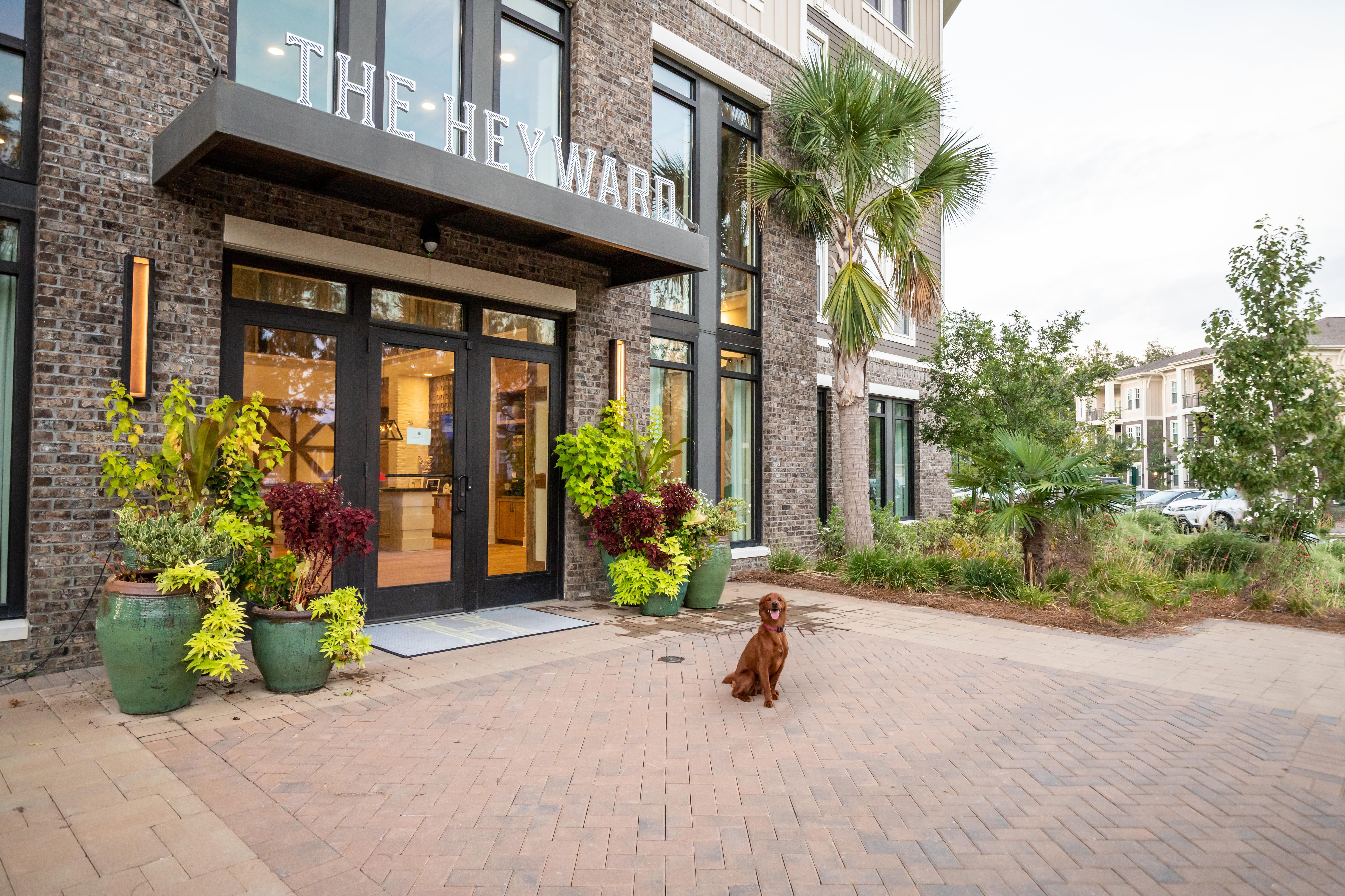 Exterior at The Heyward in Charleston, South Carolina
