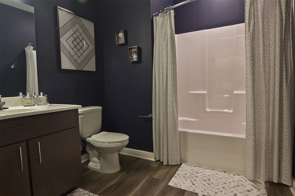 Bright bathroom at Park West 205 Apartment Homes in Pittsburgh, Pennsylvania