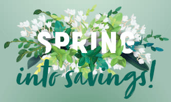 South Pointe Spring into saving graphic