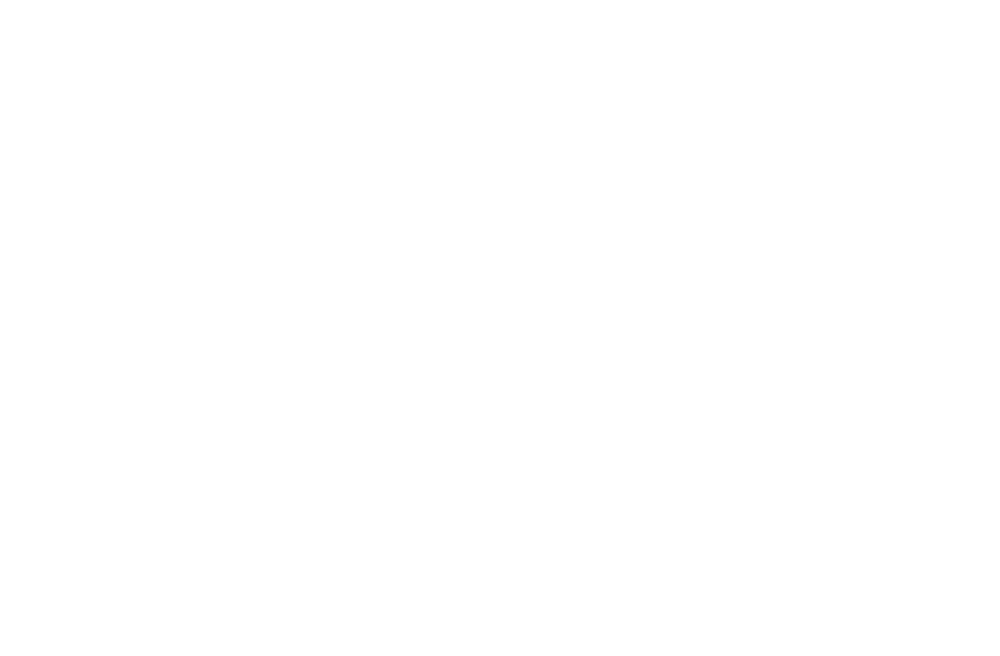 pet offer icon