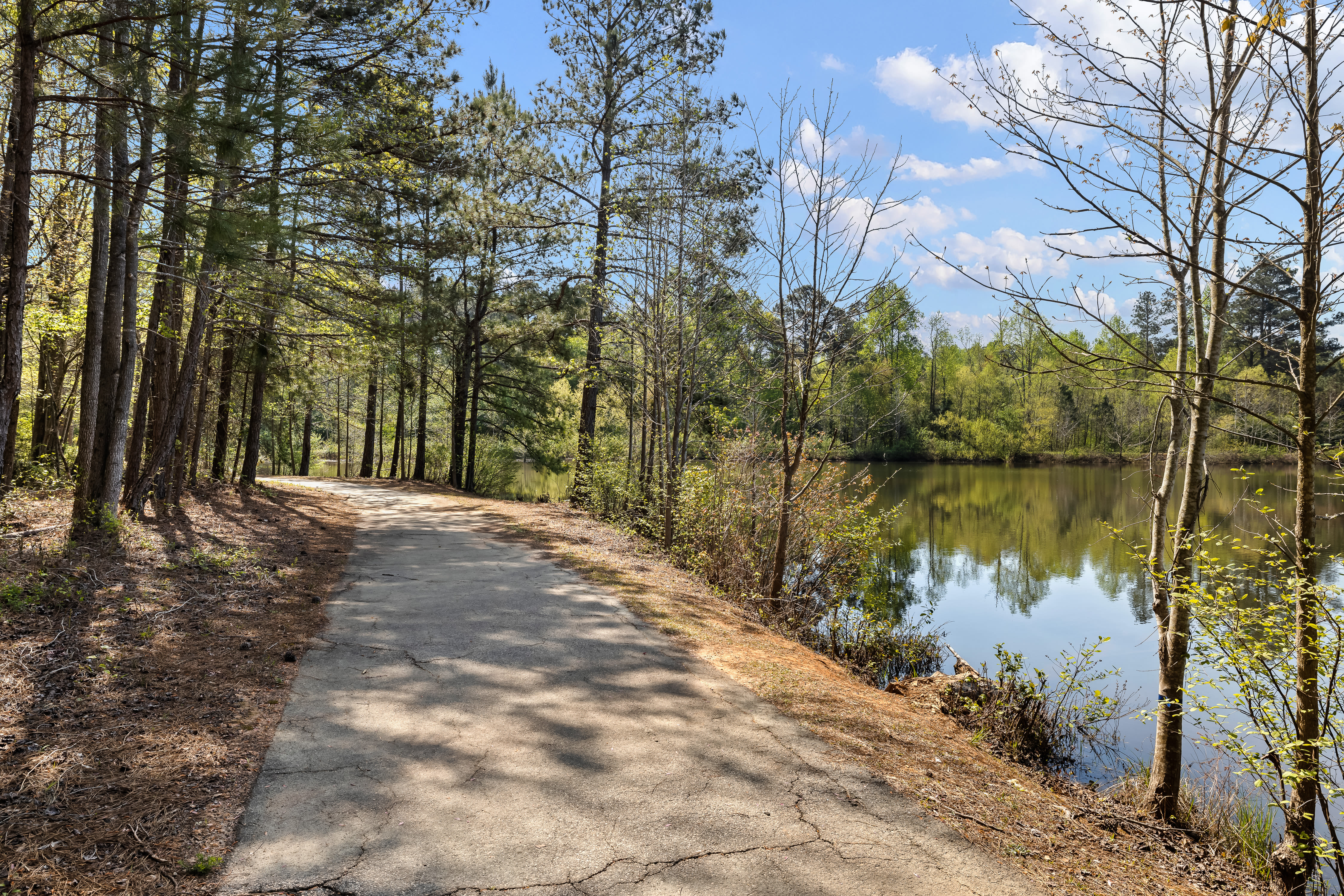 Relaxing nature trail along water's edge near The Claiborne at Newnan Lakes in Newnan, GA
