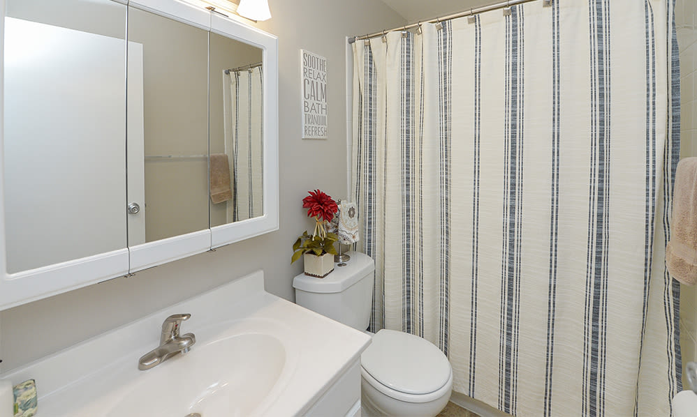 Bathroom at Lumberton Apartment Homes in Lumberton, NJ