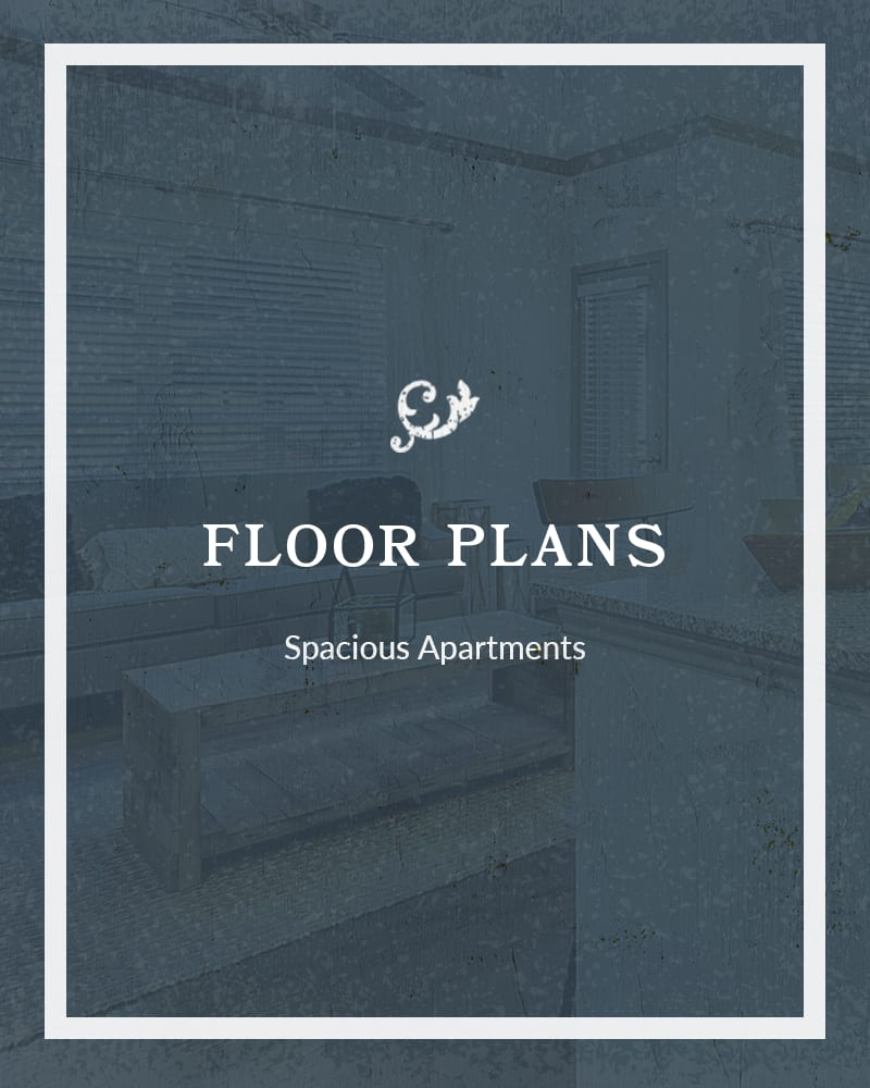 Floor plans at Plum Creek Vue in Kyle, Texas